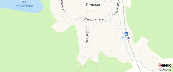 Лесная улица на карте железнодорожной станции Лельмы с номерами домов