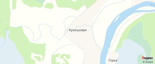 Карта деревни Кушкушара в Архангельской области с улицами и номерами домов