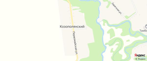 Первомайская улица на карте Козополянского хутора с номерами домов