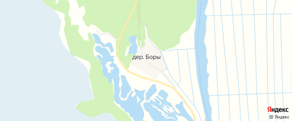 Карта деревни Боров в Архангельской области с улицами и номерами домов