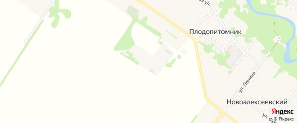 Улица Центральная усадьба на карте поселка Плодопитомника с номерами домов