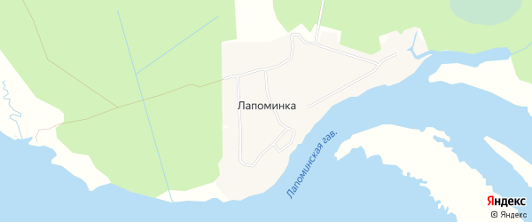 Карта деревни Лапоминки в Архангельской области с улицами и номерами домов