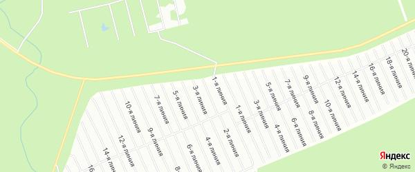 Карта садового некоммерческого товарищества Строителя сада N2 города Коряжмы в Архангельской области с улицами и номерами домов