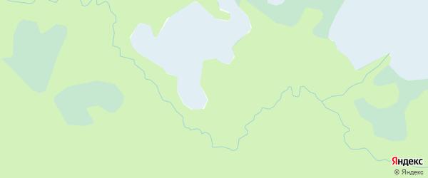 Территория дендросада на карте Приморского района с номерами домов