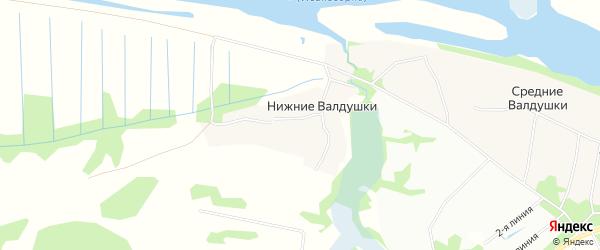 Карта деревни Нижние Валдушки в Архангельской области с улицами и номерами домов