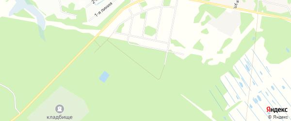Карта садового некоммерческого товарищества Надежды в Архангельской области с улицами и номерами домов