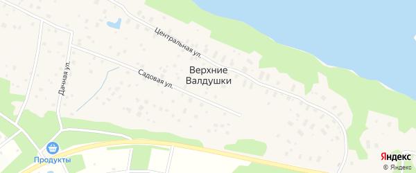 Центральная улица на карте деревни Верхние Валдушки с номерами домов