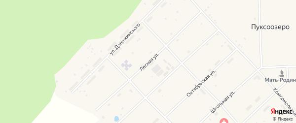 Лесная улица на карте поселка Пуксоозеро с номерами домов