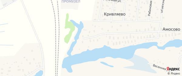 Рябиновая улица на карте деревни Кривляево с номерами домов