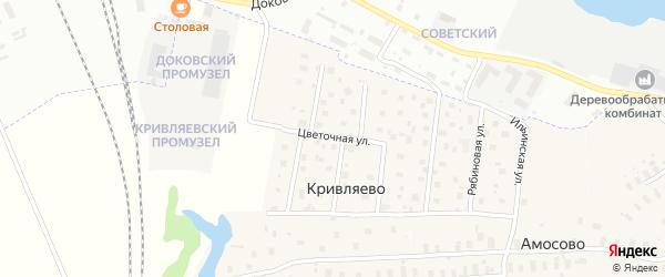 Цветочная улица на карте деревни Кривляево с номерами домов