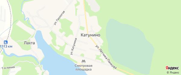 Карта поселка Катунино в Архангельской области с улицами и номерами домов