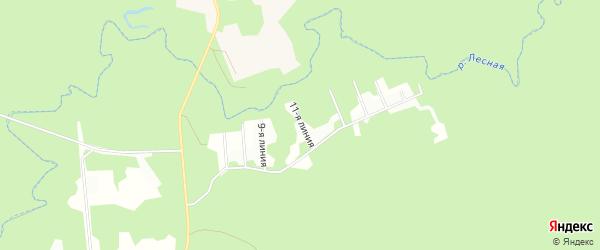 Карта садового некоммерческого товарищества Катунинца в Архангельской области с улицами и номерами домов