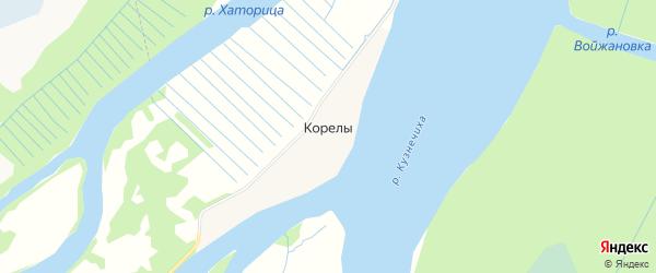 Карта деревни Корелы в Архангельской области с улицами и номерами домов