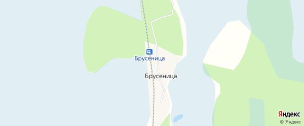 Карта железнодорожной станции Брусеницы в Архангельской области с улицами и номерами домов