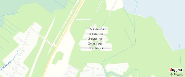 Карта садового некоммерческого товарищества Заимки в Архангельской области с улицами и номерами домов