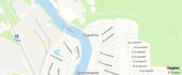 Карта деревни Куропти в Архангельской области с улицами и номерами домов