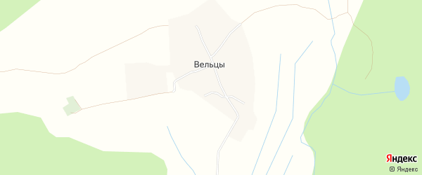 Карта деревни Вельцы в Архангельской области с улицами и номерами домов