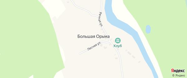 Лесная улица на карте деревни Большей Орьмы с номерами домов