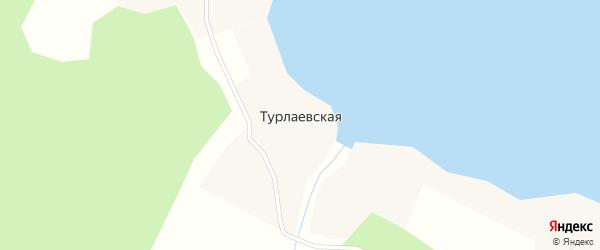 Дачная улица на карте Турлаевской деревни с номерами домов