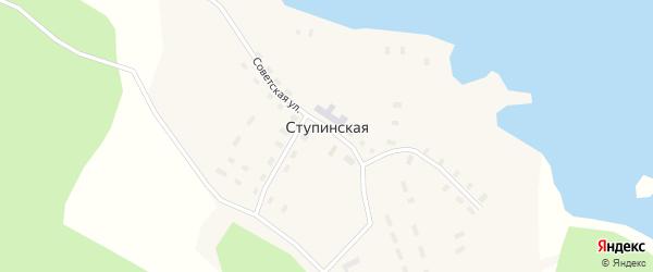 Колхозная улица на карте Ступинской деревни с номерами домов