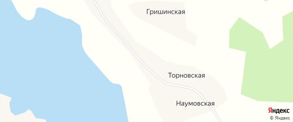 Речная улица на карте Торновской деревни с номерами домов