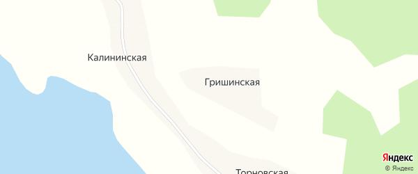 Центральная улица на карте Гришинской деревни с номерами домов