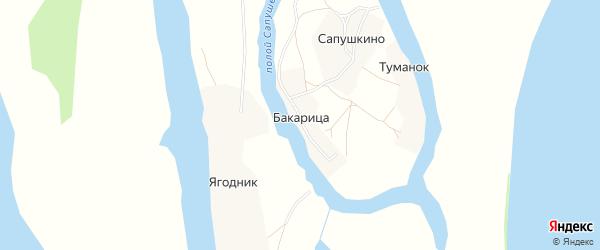 Карта деревни Бакарица в Архангельской области с улицами и номерами домов
