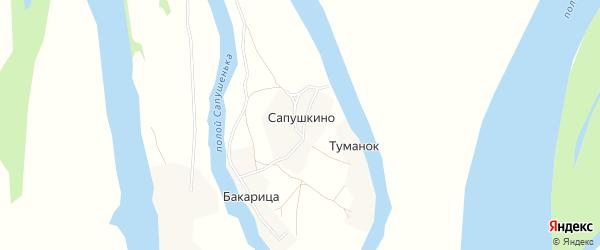 Карта деревни Сапушкино в Архангельской области с улицами и номерами домов