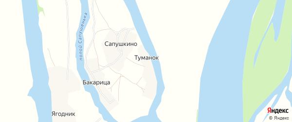 Карта деревни Туманок в Архангельской области с улицами и номерами домов