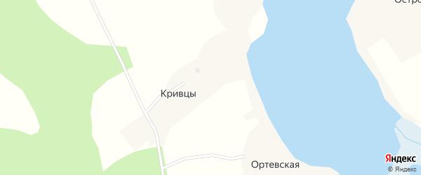Трудовая улица на карте деревни Кривцы с номерами домов