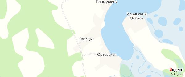 Карта деревни Кривцы в Архангельской области с улицами и номерами домов