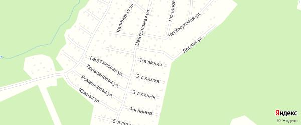 Улица Центральная 1-я Линия на карте населенного пункта СНТ Зори Севера с номерами домов