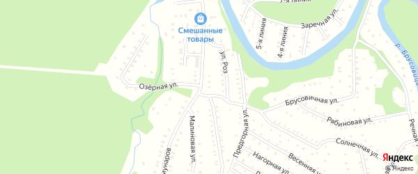 Рябиновая улица на карте садового некоммерческого товарищества Строителя сада N3 с номерами домов