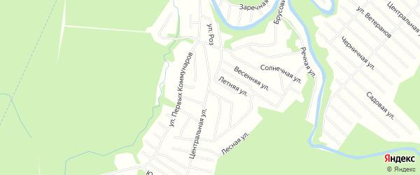 Карта населенного пункта СНТ Зори Севера города Новодвинска в Архангельской области с улицами и номерами домов