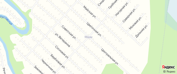 Грибная улица на карте населенного пункта СНТ Маяка с номерами домов