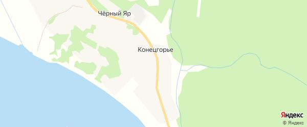 Карта деревни Конецгорье в Архангельской области с улицами и номерами домов