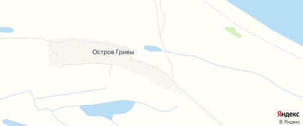 Карта деревни Острова Гривы в Архангельской области с улицами и номерами домов