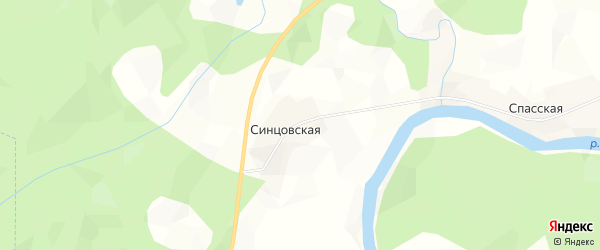 Карта Синцовской деревни в Архангельской области с улицами и номерами домов
