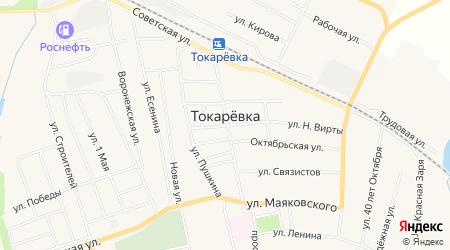 Карта поселка Токаревка в Тамбовской области