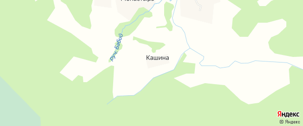 Карта деревни Кашиной в Архангельской области с улицами и номерами домов