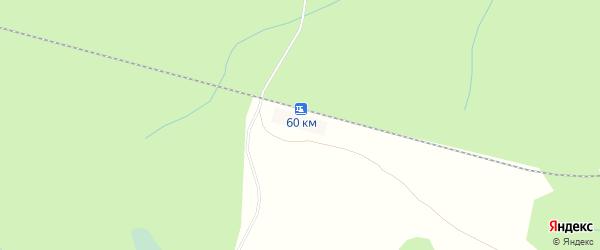Карта деревни Туймино в Архангельской области с улицами и номерами домов