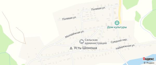Молодежная улица на карте деревни Усть-Шоноши с номерами домов