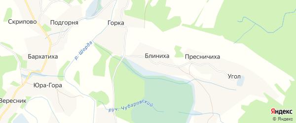 Карта деревни Блинихи в Архангельской области с улицами и номерами домов