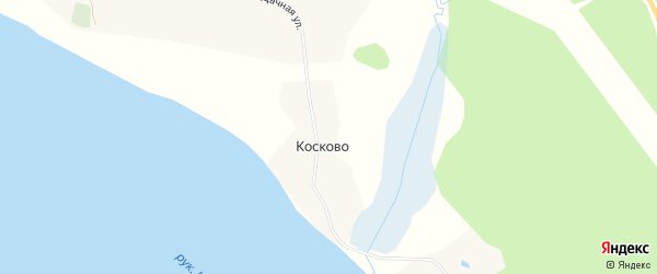 Карта садового некоммерческого товарищества Косково в Архангельской области с улицами и номерами домов