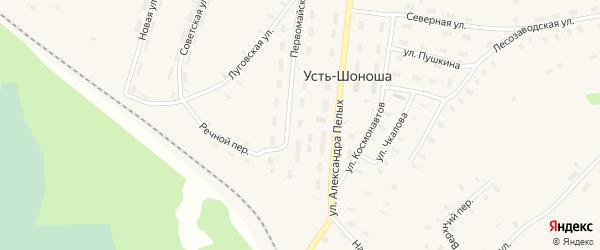 Речная улица на карте деревни Усть-Шоноши с номерами домов