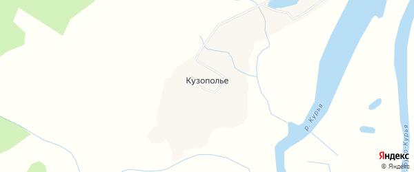 Карта деревни Кузополья в Архангельской области с улицами и номерами домов