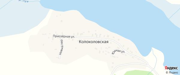 Приозерная улица на карте Колоколовской деревни с номерами домов