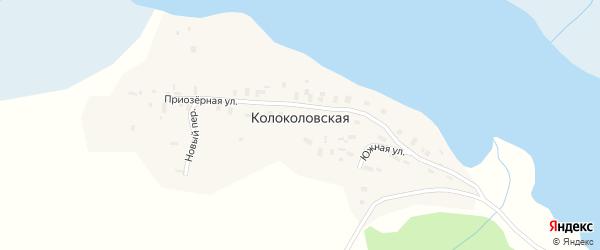 Новый переулок на карте Колоколовской деревни с номерами домов