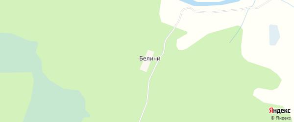 Карта деревни Беличи в Архангельской области с улицами и номерами домов