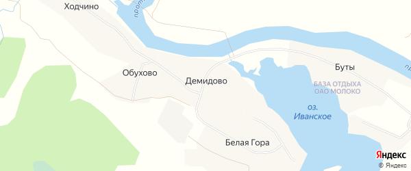 Карта деревни Демидово (Копачевский с/с) в Архангельской области с улицами и номерами домов